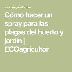 Cómo hacer un spray para las plagas del huerto y jardín   ECOagricultor