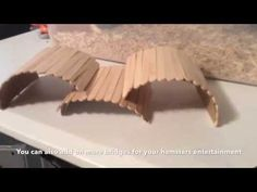 DIY Craft stick Bridge for Hamsters - YouTube