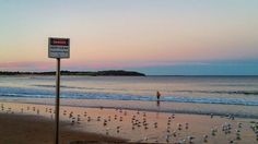 Sunset. #deewhybeach #beach #ocean #environment #oceanandearth #autumm #thenaturalworld #nature #birdlife #sustainability #organic #northernbeaches #theluckycountry #sydney #australia #earth Re-post by Hold With Hope