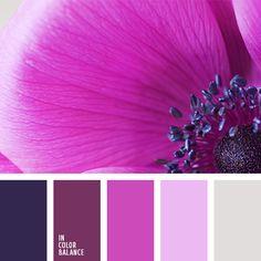 shades of purple, light gray