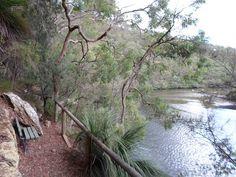 crosslands reserve, great north walk, place of winds, interpretive trail, benowie walking track, berowra creek, berowra valley national park