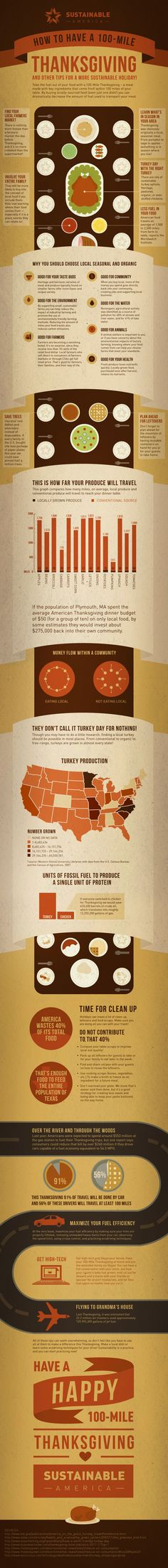 Tips for a Sustainable Thanksgiving: How to Have a 100-Mile Holiday [INFOGRAPHIC] - http://dashburst.com/infographic/sustainable-thanksgiving-tips/