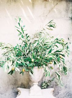 """Olive leaf- symbol of peace or victory and was historically worn by brides. The dove derives with the olive branch  """"bringing us the peace of God, sent out from the heavens""""."""