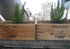 rooftop urban garden  via  5 Trash Items You Can Turn Into an Urban Garden - Bon Appétit