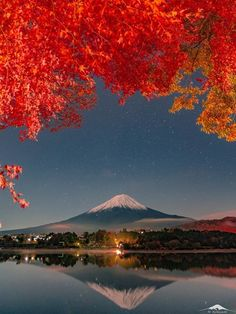 Mirrored Mt Fuji in Autumn Best Nature Images, Fuji Mountain, Mont Fuji, Japanese Travel, Tokyo, Science And Nature, Nice View, Beautiful Landscapes, Places To Travel