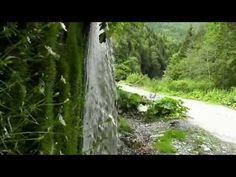 Cascada Cheile Latoriţei – poate cea mai frumoasă din România | Ramnicu Valcea Week Turism Romania, Case, Youtube, Plants, Waterfalls, Green, Romania, Plant, Youtubers
