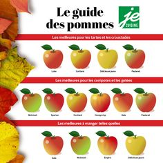L'automne rime avec saison des pommes ! On a la chance au Québec de cultiver plusieurs variétés de pommes tout aussi succulentes les unes que les autres, et qui ont chacune leurs particularités.