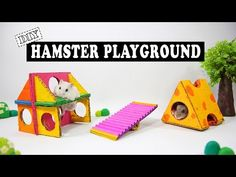 DIY Making Amusement Park From Cardboard And Popsicle Sticks For Hamster Playing, DIY Making Amusement Park From Cardboard And Popsicle Sticks For Hamster Playing, Dwarf Hamster Toys, Hamster Diy Cage, Diy Hamster Toys, Hamster Life, Hamster Habitat, Baby Hamster, Hamster House, Hamster Ideas, Hamster Stuff