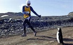 Wow, un marathon en ANTARTIQUE, genre avec personne sauf des pingouins.