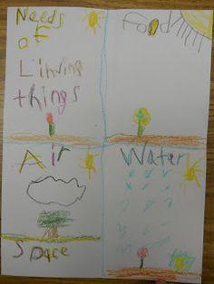 Plants lesson - living things need...