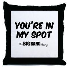 .funny pillow The Big Bang Theory  Sadly....this is our house....we have spots!