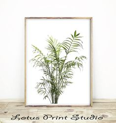Palm Leaf Print Botanical Wall Art Green House Plant Decor