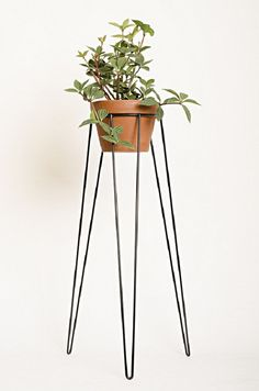 Black Metal Wire Plant Stand Mid-century Inspired