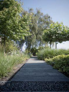 Tuinontwerp moderne tuin met pad van betonnen tegels | modern garden with pathway of concrete tiles