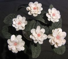 Seashell Crafts | slipper shell seashell crafts flowers - Ocean Blooms Now