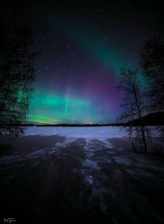 Aurora borealis in wintertime!