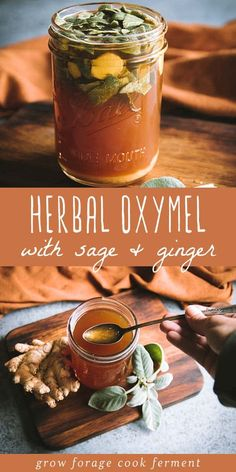 Herbal Oxymel Recipe with Sage and Ginger