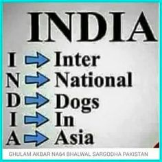 """#Hinduism is #Devilism .#India Means = #International #Dogs #In #Asia.  #Hinduism = #Devilism. , In #Hindi #Language #Devil #Means #DEV for He #Devil & #DEVI $Means #She #Devil. It is tradition in Hinduism to write a Suffix """" DEV or DEVI """" , #DEV for #Male and #DEVI for #Female . Hindus are IDOLATORS . You can buy  their gods in any Shop. Devil = #Satan or #Shaitan or #IBLIS , The #Enemy of #Adam and his #Children [ #Mankind ] . #India is #Enemy of #Mankind ."""