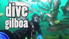 Scuba Diving The Gilboa Quarry - YouTube