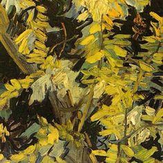 Van Gogh natures