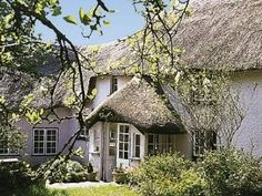 The Thatch Cottage