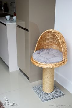 All products are cozy, natural and washable, wipe able and replaceable. All cat climbing trees can be extended and parts replaced giving your cat the chance to experience variety and changes within… Cat Activity Centre, Activity Centers, Cat Climbing Tree, Rock Climbing, Cat House Diy, Cat Hacks, Cat Towers, Cat Room, Cat Condo
