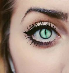 Would make awesome cat eyes lenses green love it halloween makeup fashion style … Would make awesome cat-eye lenses green, you'll love it more halloween make-up fashion style Cat Eye Contacts, Colored Eye Contacts, Halloween Contacts, Pretty Eyes, Cool Eyes, Beautiful Eyes, Cat Eye Tattoos, Easy Cat Eye, Cat Eye Makeup Tutorial