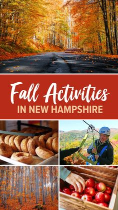 Fall Vacations, Vacation Places, Vacation Trips, Places To Travel, Places To Go, Travel Destinations, Vacation Ideas, Autumn Activities For Kids, Family Activities