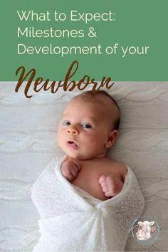 Newborn to 3 Months Milestones & Development - Babyzimmer Junge Unisex Baby Names, Boy Names, Bebe Rexha, Baby Monat Für Monat, Newborn Schedule, Baby Sleep Schedule, Newborn Baby Care, Caring For Newborn Baby, Newborn Baby Needs
