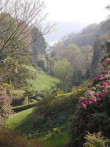 Glendurgan, National Trust garden in Cornwall