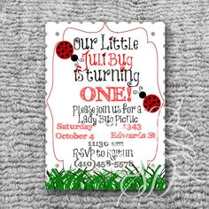 Lady Bug Picnic Birthday Party Invitation by SkidamarinkDesign