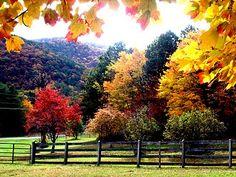 Fall in Bedford, VA.