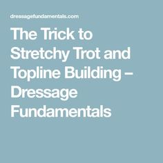 The Trick to Stretchy Trot and Topline Building – Dressage Fundamentals