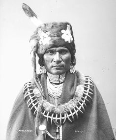 The Native Americal chiefs wore grizli bear's claws necklaces to capture this way the strenght of the animal and to show-off their own courage. Description from local-moda.blogspot.co.uk. I searched for this on bing.com/images