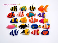 Coral Reef Fishes felt magnets, Tropical fishes - CHOOSE YOUR ITEMS - Price per 1 item - make your own set