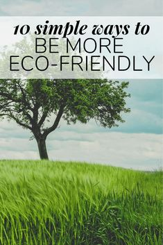 10 simple tips for how to be more eco-friendly at home. If you're looking to add some more green habits to your life, this post will help! Green Living Tips, Green Tips, Go Green, Green Ideas, Advent For Kids, Advent Calendars For Kids, Diy Valentine's Pillows, Dollar Tree Storage Bins, Eco Friendly House