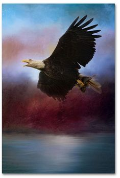 Trademark Global Jai Johnson 'Captured At Dawn' Canvas Art - 32 x 22 x 2 Mission Images, Graduation Makeup, Graphic Design Templates, Simple Flowers, Face Cleanser, Mens Gift Sets, Eyeshadow Makeup, Mother Day Gifts, Bald Eagle