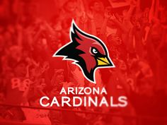 Arizona Cardinals by Brandon Williams, via Behance