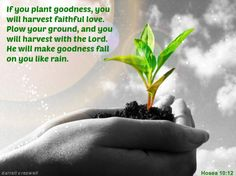 Inspirational Pictures, Images and Bible Verses of God's Grace