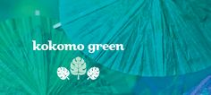 Vert Kokomo by DavidsTea Davids Tea, My Cup Of Tea, Loose Leaf Tea, Rose Petals, Tea Cups, Green, Pineapple, Mango, Sweets
