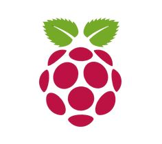 raspberry pi logo - Cerca con Google