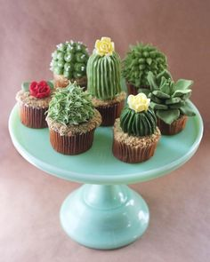 From Alana Jones-Mann, a baker, culinary artist and DIY enthusiast in Brooklyn, cupcakes that look like miniature cacti. They're so cute, they're even planted in crushed graham cracker soil.