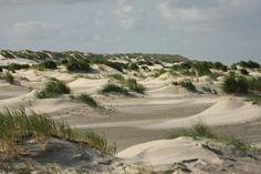 Duinen op Ameland. Friesland, Netherlands Out To Sea, Strand, Sea Shells, Seaside, Holland, Ocean, Flat, Country, Nice