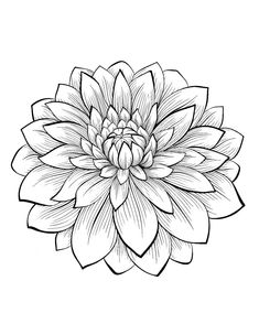 Adult Coloring Book Flowers Inspirational Dahlia Color One Of the Most Beautiful Flowers From the Gallery Flowers Printable Flower Coloring Pages, Mandala Coloring Pages, Coloring Book Pages, Coloring Pages For Kids, Coloring Sheets, Kids Coloring, Coloring Pages Of Flowers, Free Coloring, Book Flowers