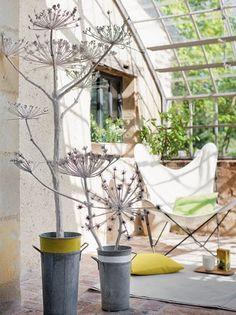 Des fleurs de graminées recouvertes de plâtre // Grass flowers covered with plaster