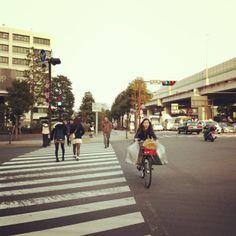 Intersection of fresh and start. {Yokohama, Japan.}
