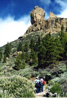 Sendero al  Roque Nublo Las Palmas de  Gran Canaria (España)