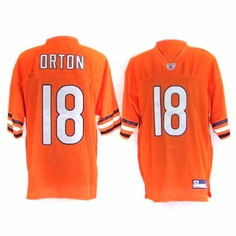 Wholesale nfl Chicago Bears Brian Hoyer Jerseys