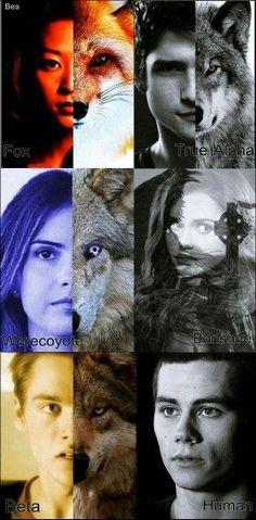 Kira Yukimura - Fox/ Kitsune, Scott Mccall - werewolf/ true apha, Malia Hale/Tate - werecoyote, Lydia Martin - Banshee, Liam Dunbar - Werewolf/Beta and Stiles Stilinski - Human/ The best. Aka Stiles will be forever loner😂❤ Scott Teen Wolf, Teen Wolf Mtv, Teen Wolf Dylan, Teen Wolf Stiles, Teen Wolf Malia, Teen Wolf Memes, Teen Wolf Quotes, Teen Wolf Funny, Teen Wolf Cast