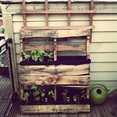 urban garden out of pallets